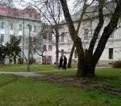 Park a Cégbíróság előtt